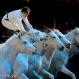 Olympia Horse Show 2012/Nadīna Zavadilika